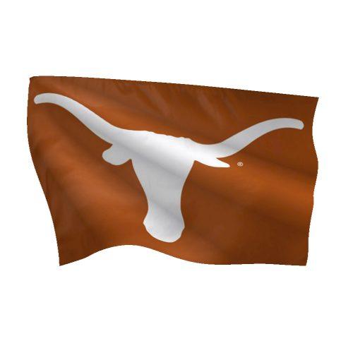 University of Texas Deluxe Flag