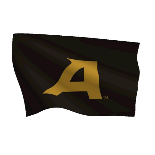 Westpoint Military Academy Flag