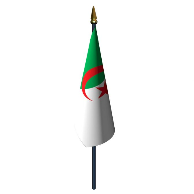 4in x 6in Algeria Flag with Staff and Spear