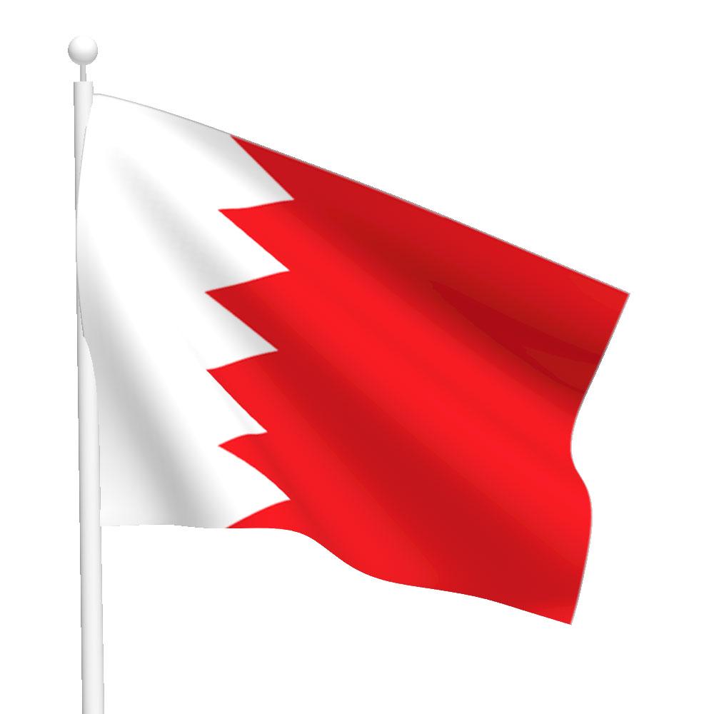 Polyester Bahrain Flag Light Duty Flags International