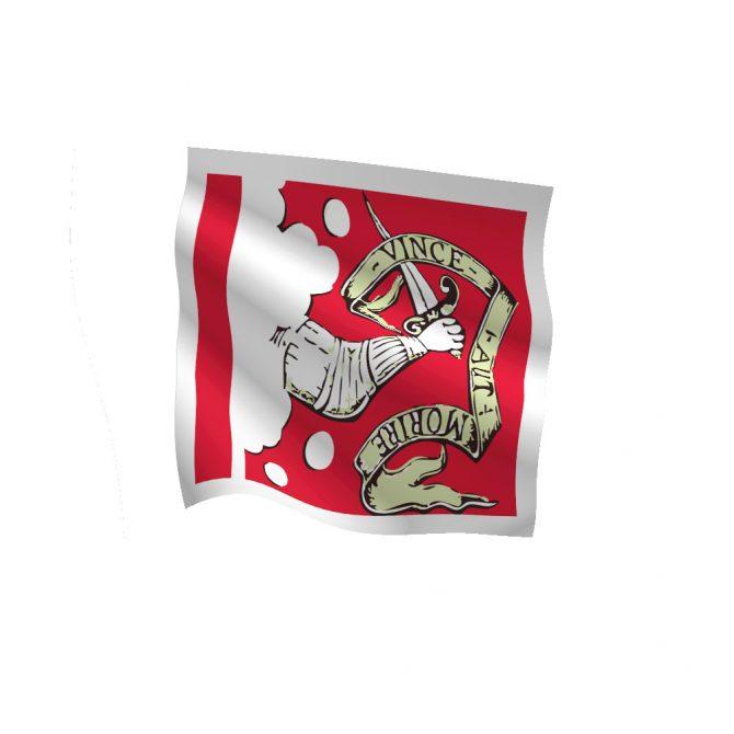 3ft x 3ft Bedford Flag