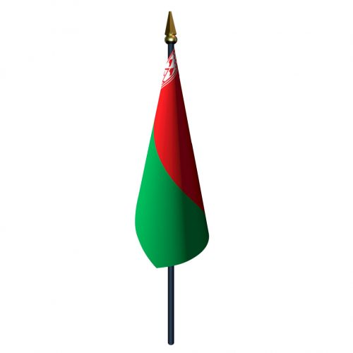 4in x 6in Belarus Flag with Staff and Spear