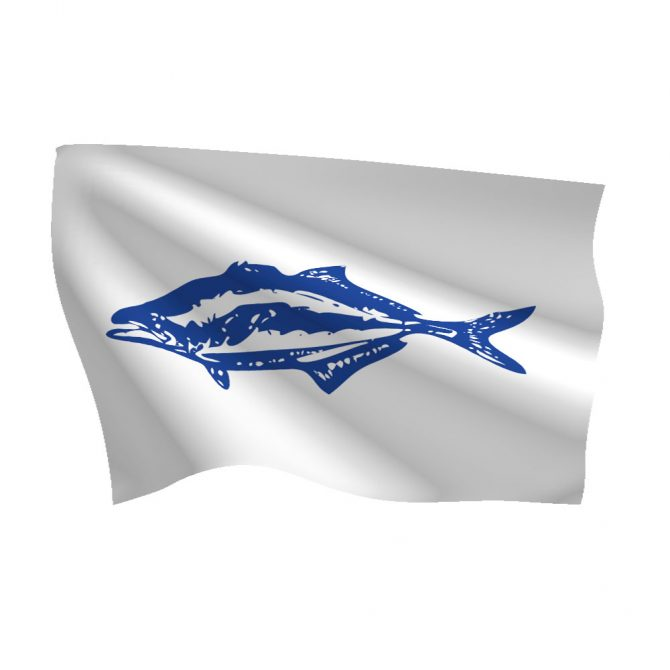 12in x 18in Bluefish Flag