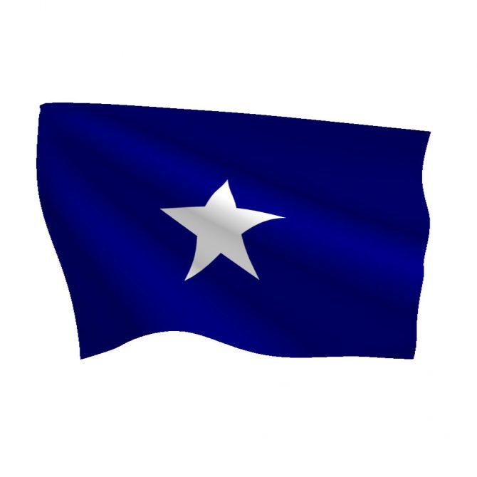 3ft x 3ft Bonnie Blue Flag