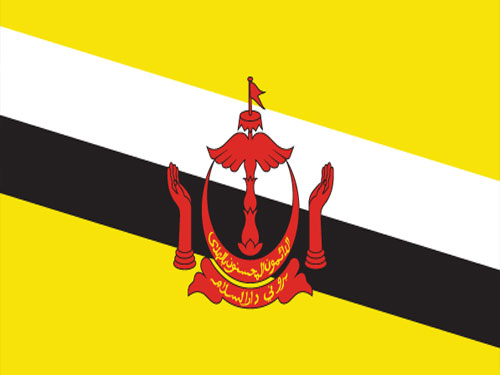 4in x 6in Brunei Flag with Staff and Spear