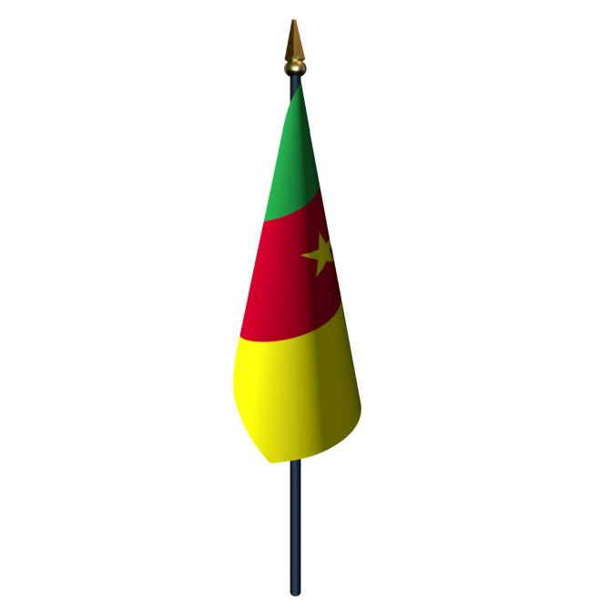 4in x 6in Cameroon Flag with Staff and Spear