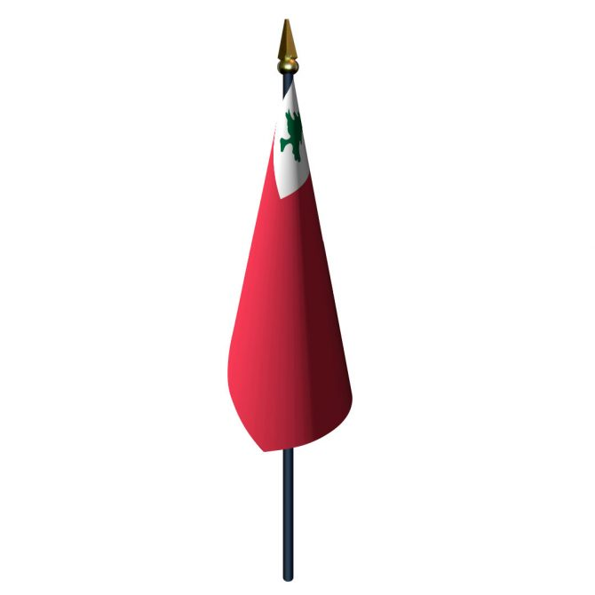 4in x 6in Continental Flag with Staff and Spear