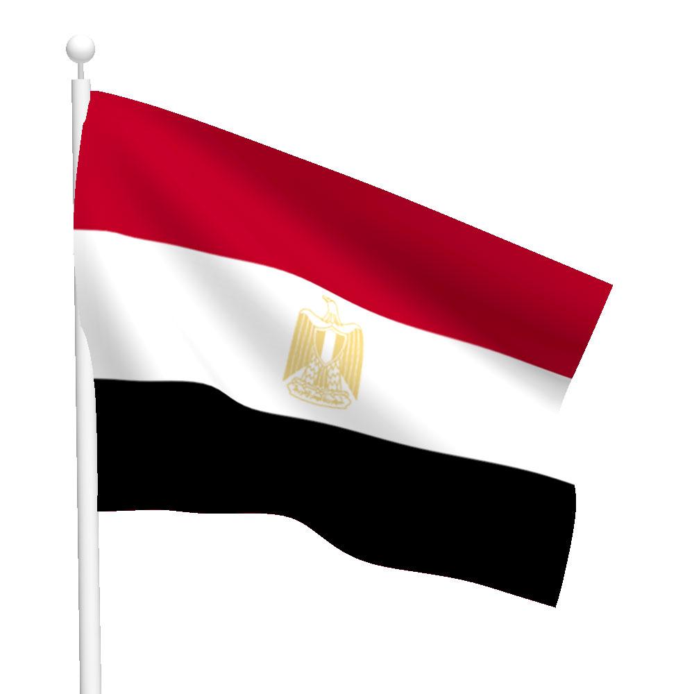 Polyester Egypt Flag Light Duty Flags International
