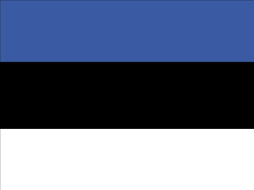 4in x 6in Estonia Flag with Staff and Spear