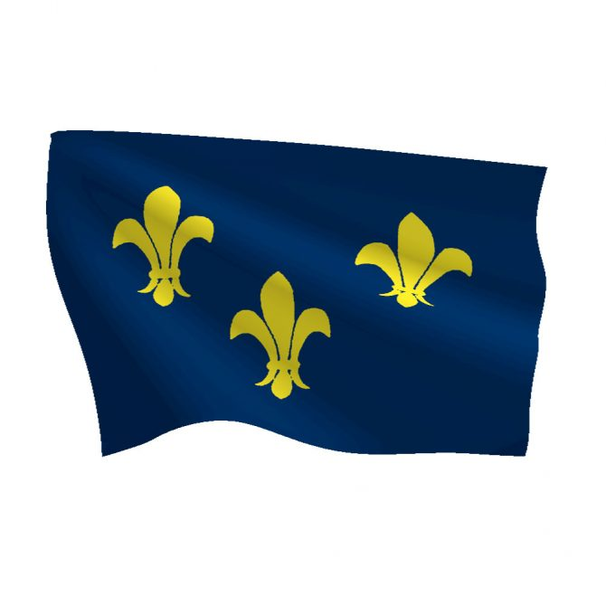 3ft x 5ft French Fleur-de-lis Flag