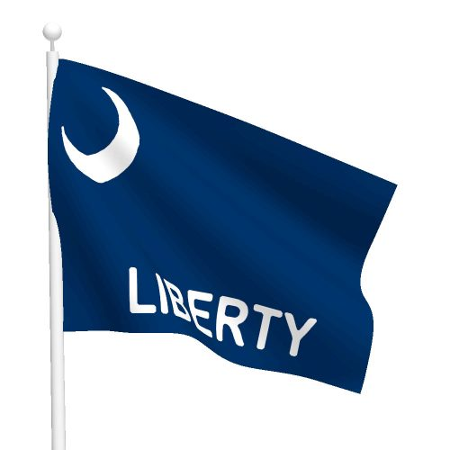 3ft x 5ft Fort Moultrie Flag