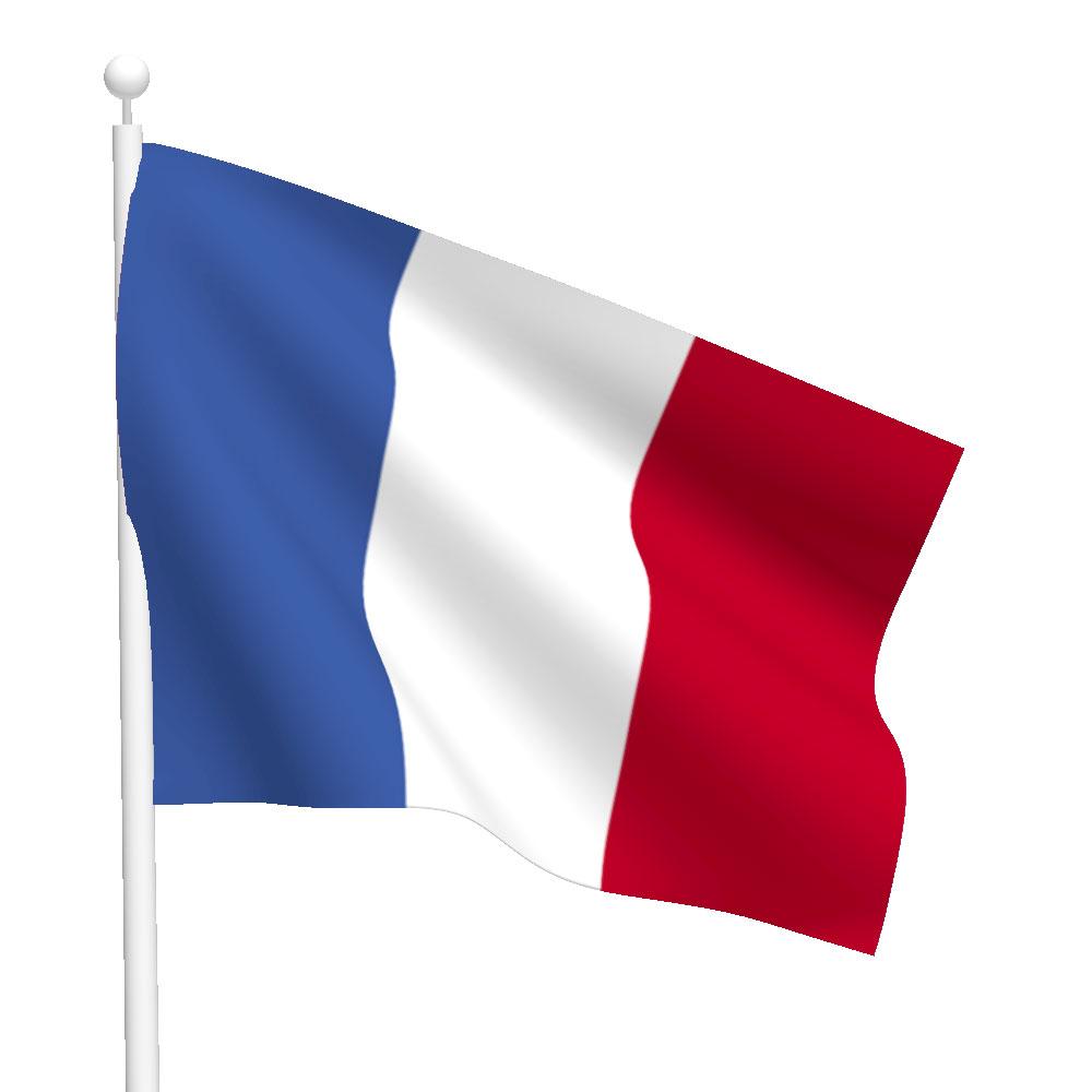 Polyester france flag light duty flags international france flag publicscrutiny Choice Image