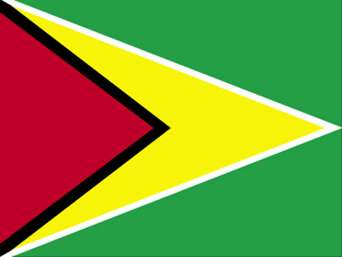 4in x 6in Guyana Flag with Staff and Spear