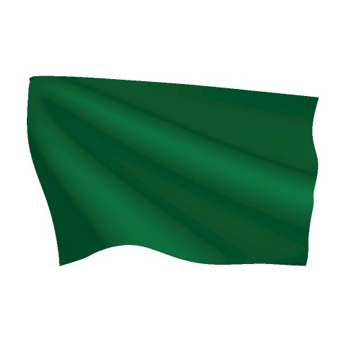 Irish Green Flag