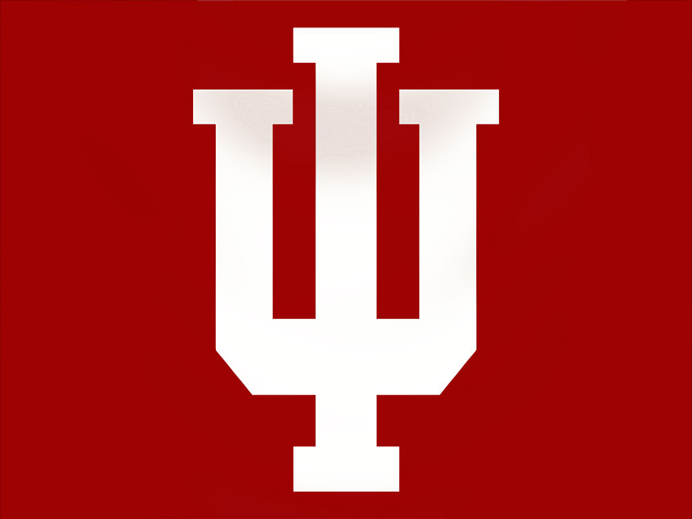 Indiana University Flag High Quality Flags International