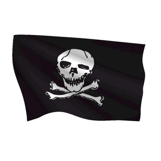 Nylon Jolly Roger Flag