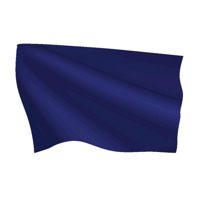 Legion Blue Flag