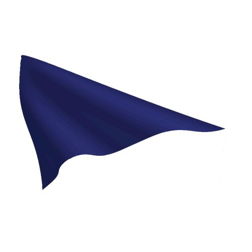 Legion Blue Pennant
