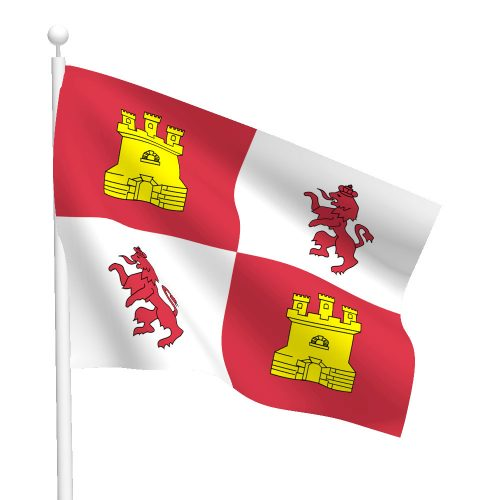 3ft x 5ft Lions and Castles Flag