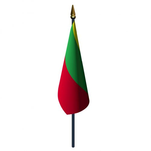 4in x 6in Lithuania Flag with Staff and Spear