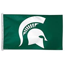 Michigan State University Spartan Head Flag