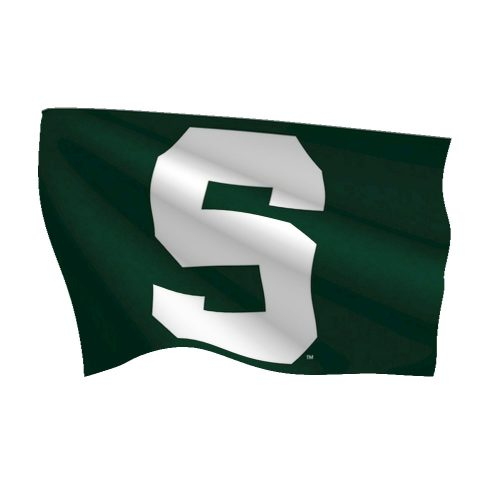 Michigan State University Polyester Flag