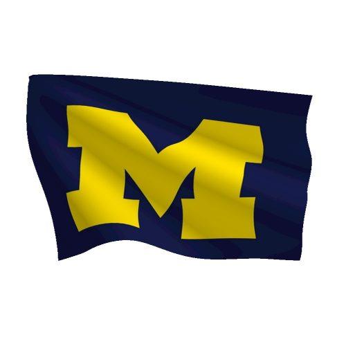 4. Michigan - 22% Off