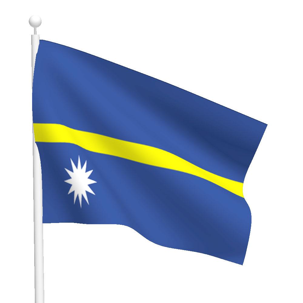 Nauru Flag Heavy Duty Nylon Flag Flags International