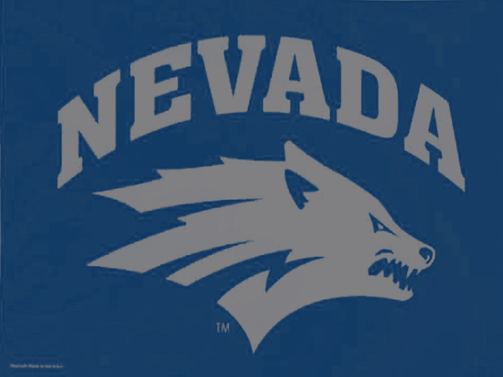 University of Nevada Flag (High-Quality) - Flags International