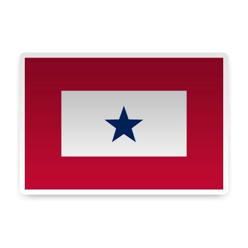 1 Blue Star Sticker