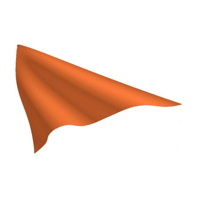 Orange Pennant