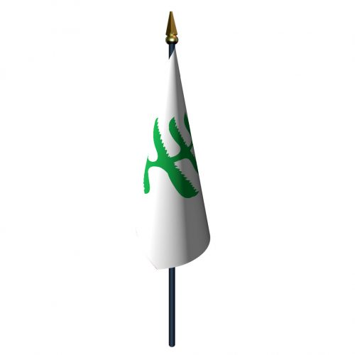 4in x 6in Pine Tree Flag with Staff and Spear