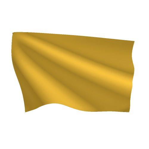 12in x 18in Quarantine Flag