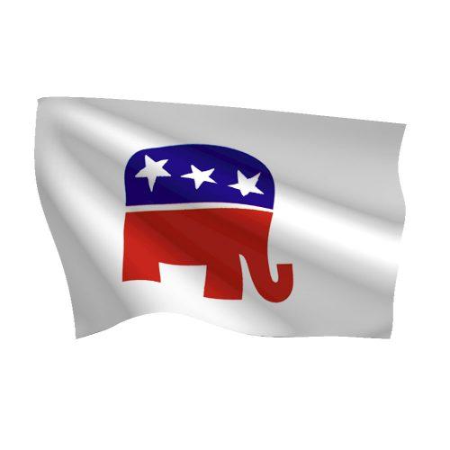 Political Flags