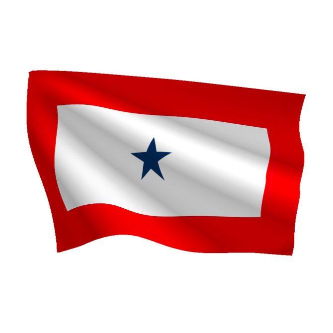 3ft x 5ft Service Star Flag