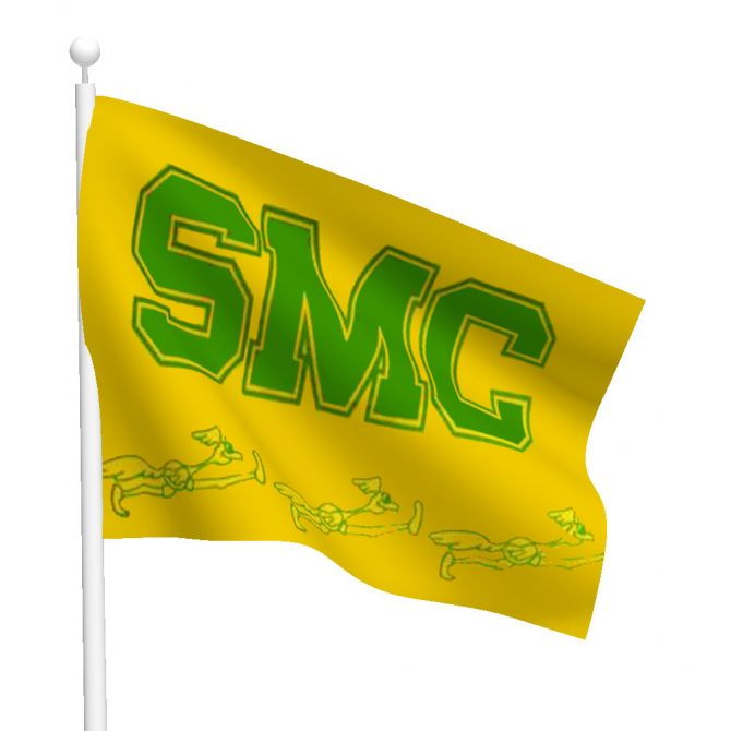 Southwestern Michigan College Flag