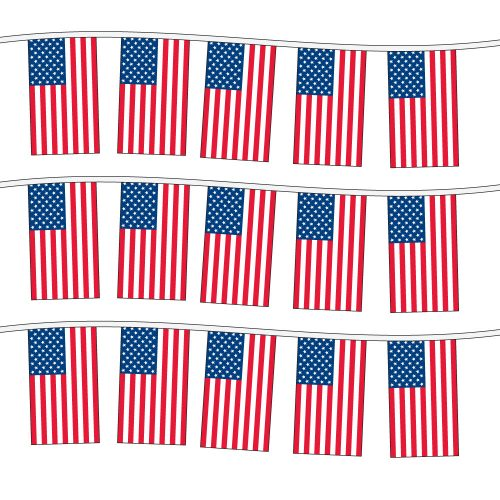 100ft of Plastic Stringed American Flags