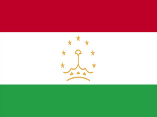 4in x 6in Tajikistan Flag with Staff and Spear