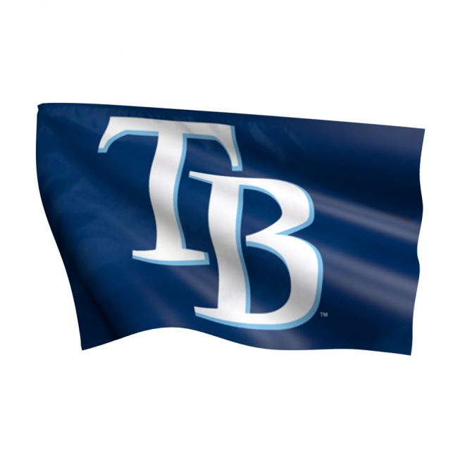 Tampa Bay Rays Flag