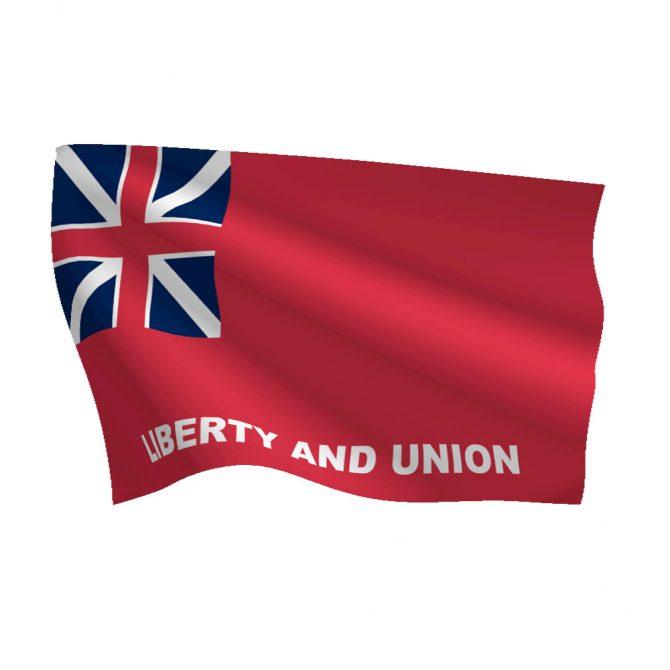 3ft x 5ft Taunton Flag