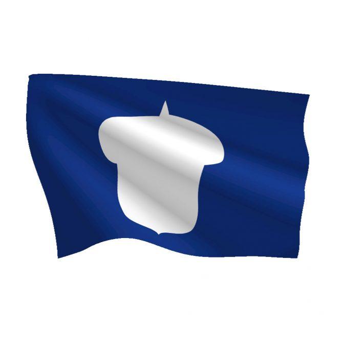 12in x 18in Treasurer Flag