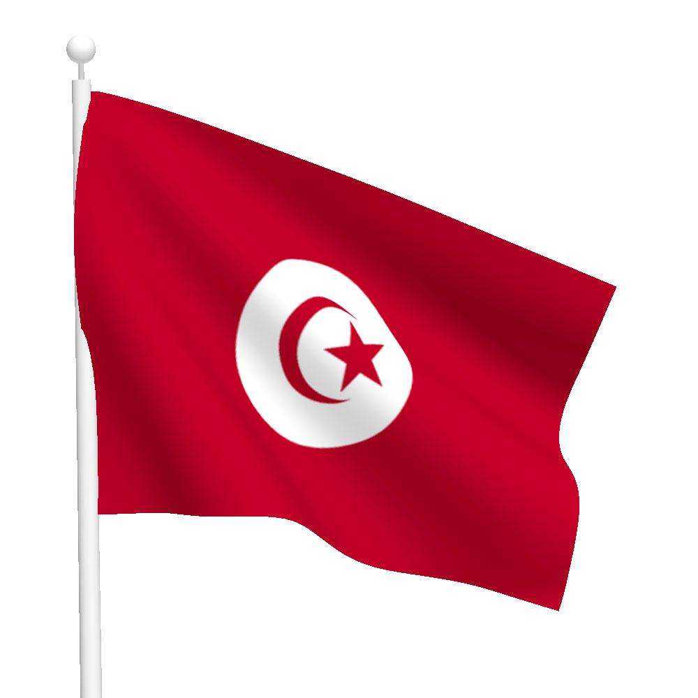 Tunisia Flag Heavy Duty Nylon Flag Flags International