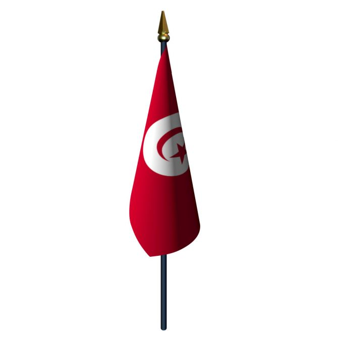 4in x 6in Tunisia Flag with Staff and Spear