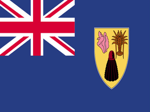 4in x 6in Turks and Caicos Flag with Staff and Spear