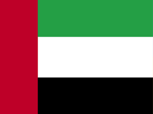 4in x 6in United Arab Emirates Flag with Staff and Spear