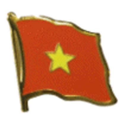 Vietnam Flag Lapel Pin