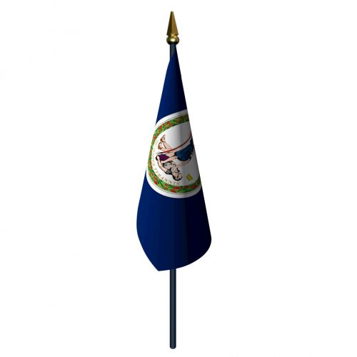 Virginia Flag with Staff and Spear