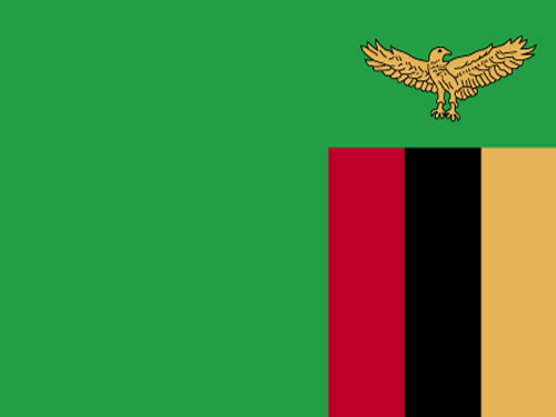 4in x 6in Zambia Flag with Staff and Spear